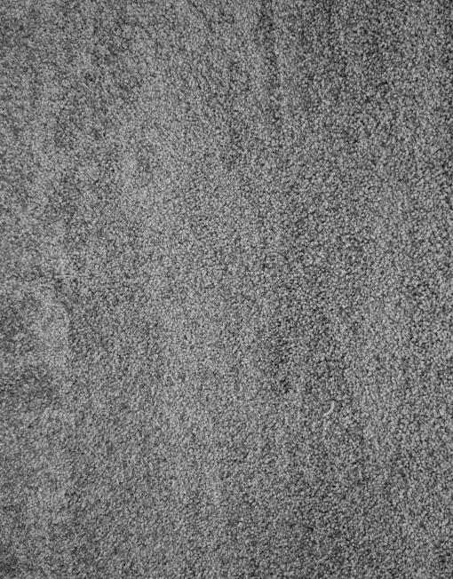 moquette tresor gris