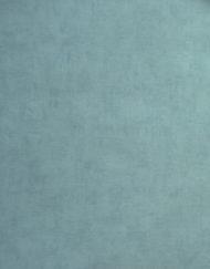 Intissé toilé bleu